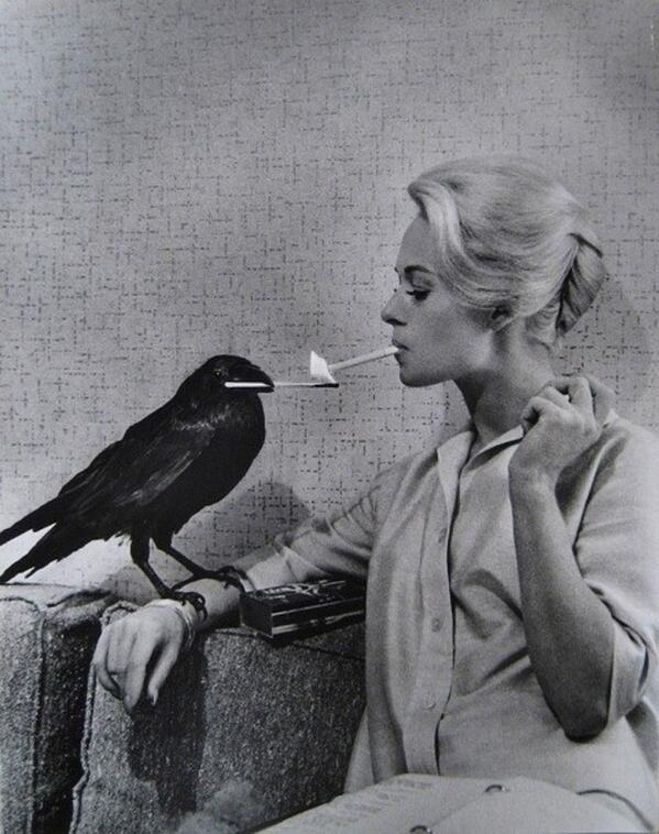 "Tippi Hedren having her cigarette lit by a crow on the set of ""The Birds"""
