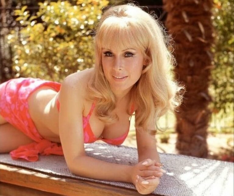 The lovely Barbara Eden posing for a photo shoot outdoors in the 1960s